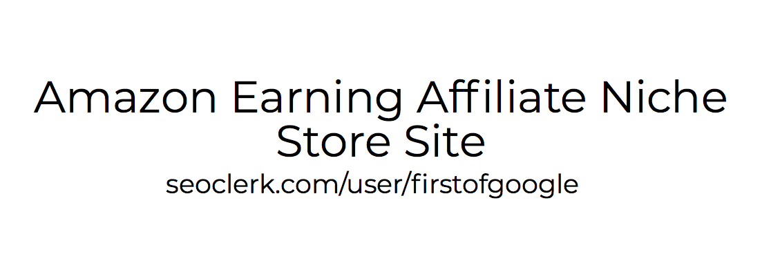 Amazon Earning Affiliate Niche Store Site