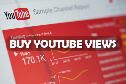 High Quality YouTube video promotion life time guaranteed