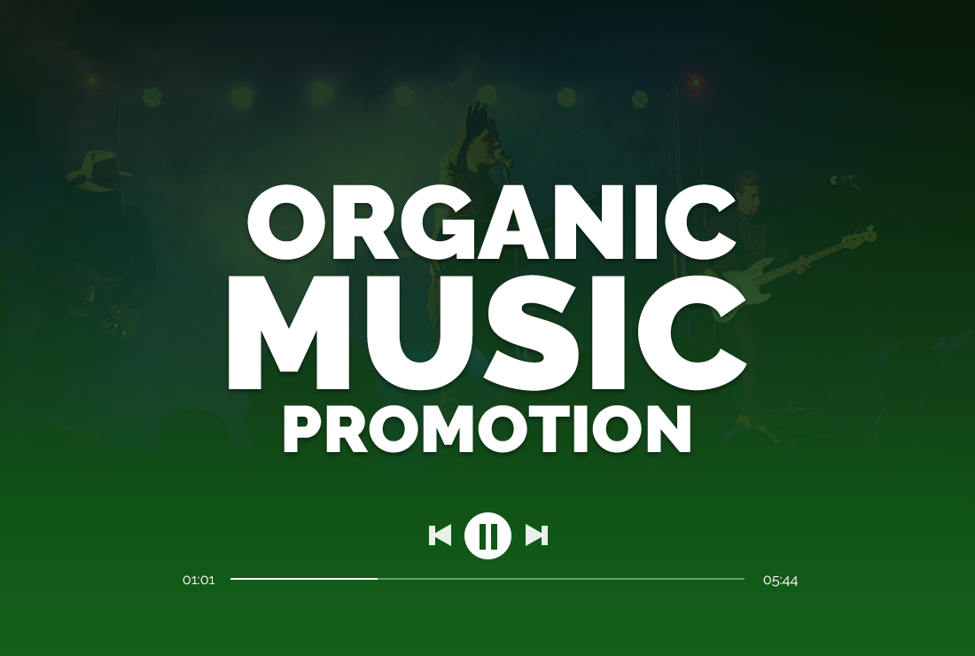 I will do organic spottiify music promotion All Natural