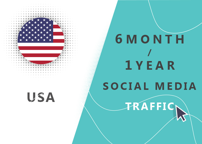 6 MONTH OR 1 YEAR USA SOCIAL MEDIA TRAFFIC