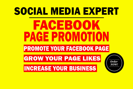 I will do organic advertising of your facebook page to the million of peoples