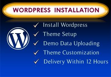 WordPress installation,  theme setup,  plugin install,  basic seo
