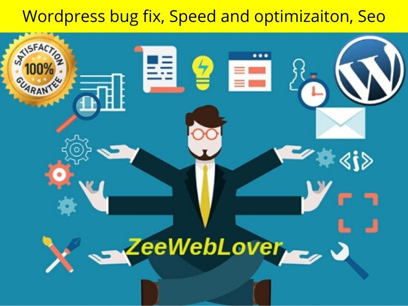 fix wordpress bug,  errors,  issues or any technical problem