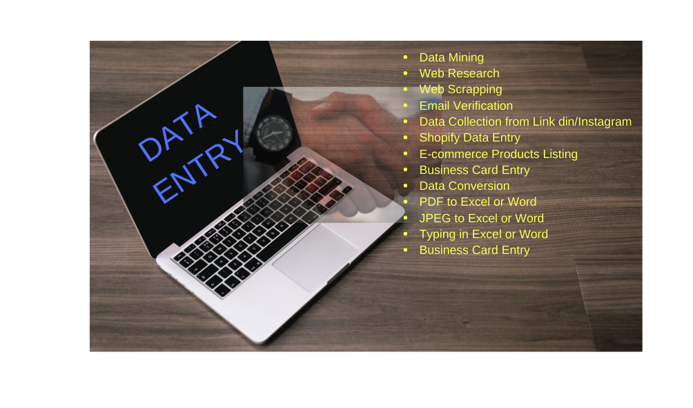 Quick delivery,  any forms of data entry and web search