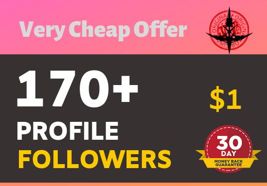 Add 170+ Non Drop Super Fast profile followers