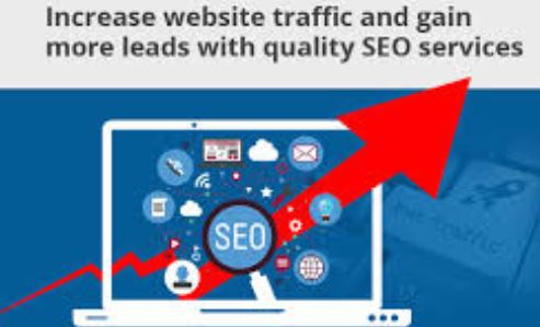 I Provide You 2500 Web Traffic from USA Direct Visit With Referrer