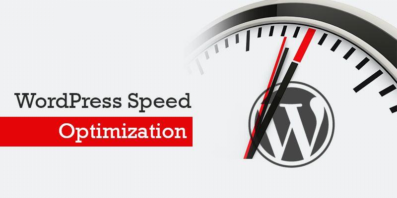 I will Speed UP Wordpress Website & Fix Issues