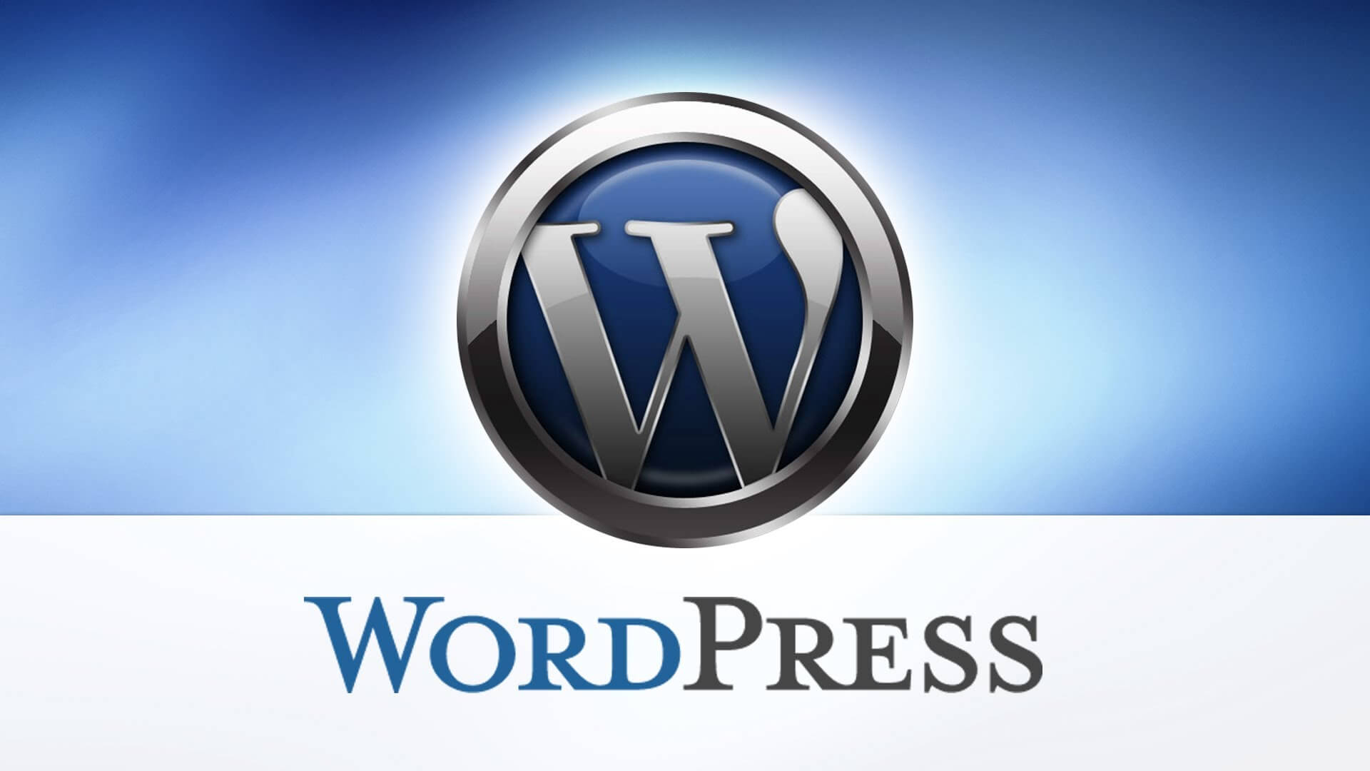I will fix your any WordPress problems.