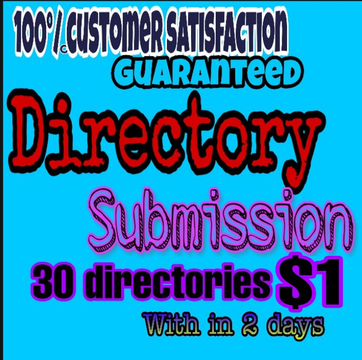 30 Directory submission service provided