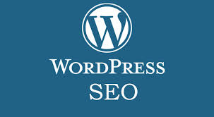 I will do SEO optimize your wordpress website