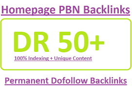 Build 10 pbn DR 50 plus to 60 plus high quality backlink