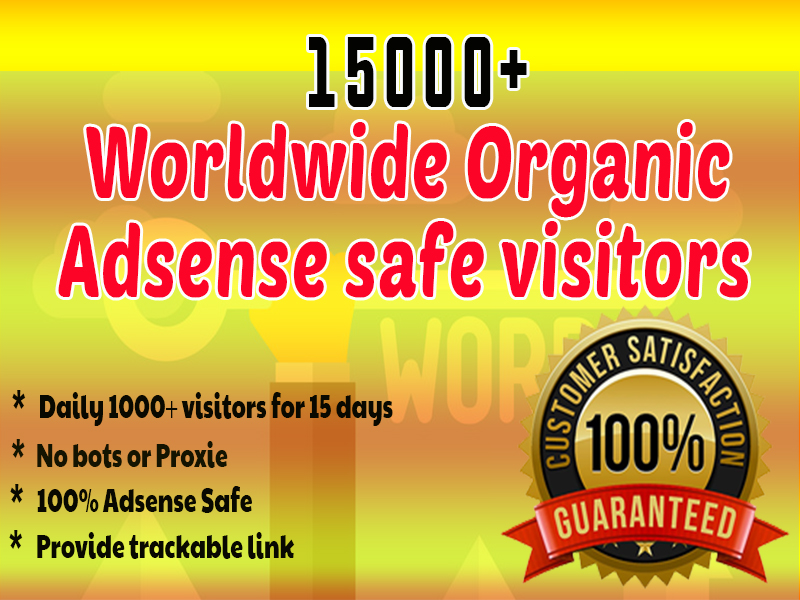 Send 15000 organic adsense safe human Web Traffic