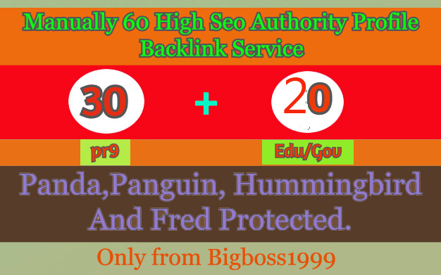I will manually do 30 PR9 + 20 Edu/Gov High SEO Authority Backlinks - Skyrocket your Google RANKINGS