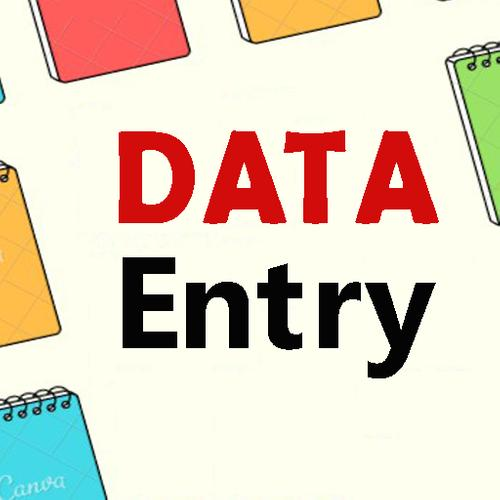 I will do data entry on excel and word.
