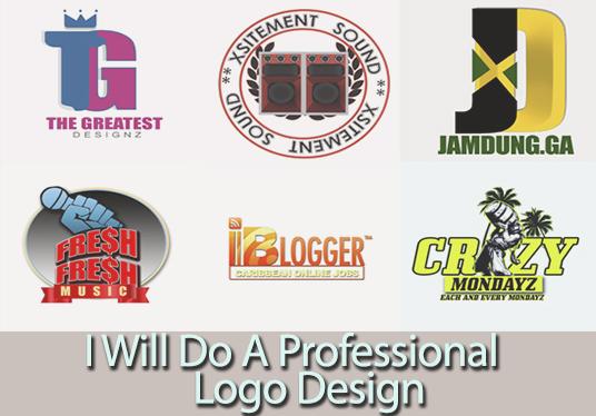 i will do a professional logo design