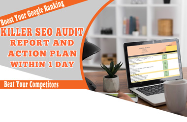 I will provide a Killer SEO audit report and long-term action plan within 1 day