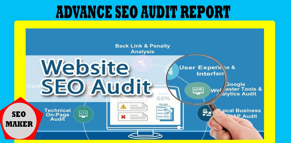 I will perform a professional technical SEO audit for your site