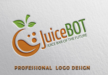 Professional logo design Express delivery 24 hours