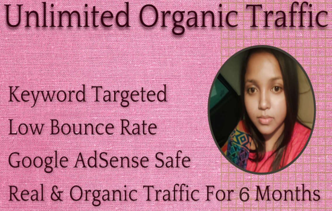 Unlimited Real and Organic Traffic For 6 Months