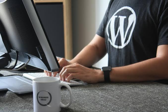 wordpress full website development and bug fix