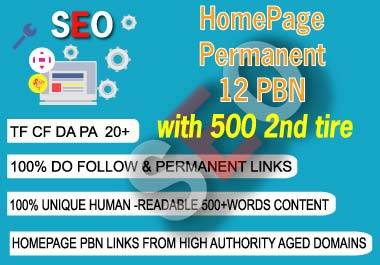 2020 Make 12 High PA DA TF CF HomePage PBN Backlinks and 500 2nd tire Services