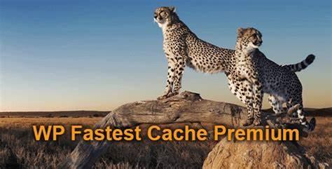 WP Fastest Cache Premium Plugin
