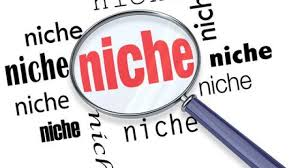 I Will 40 niche related blog comment high quality backlinks