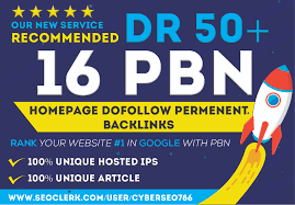 Build 16 Permanent DR 50+ Homepage PBN Dofollow Backlink