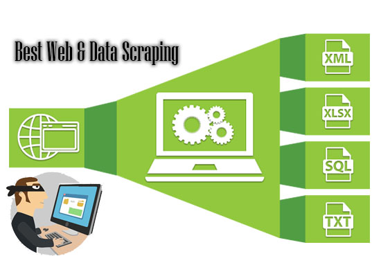 I will do your all web scraping work