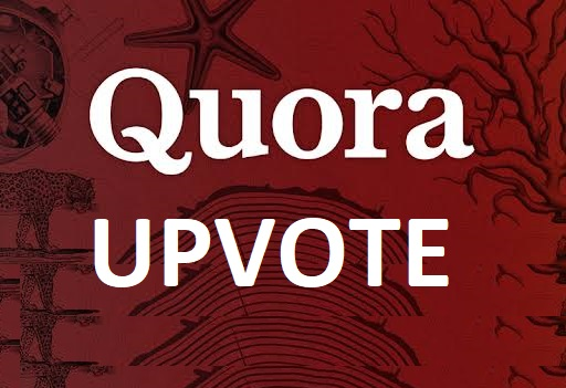 Give you 30+ quora up votes from different IP address and country