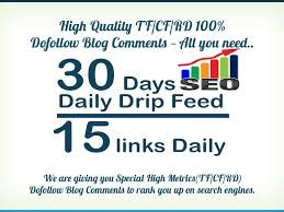 I will 30 days seo drip feed daily 15 dofollow blog comments