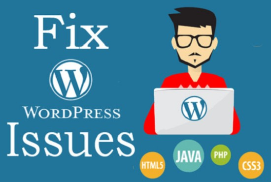 I will fix WordPress website issues and bugs