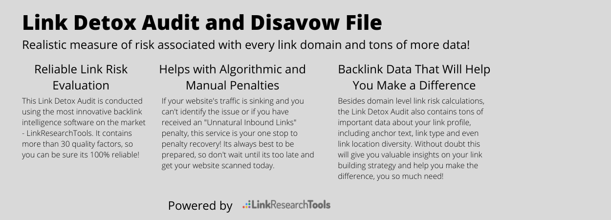Expert Link Risk Audit and Disavow File
