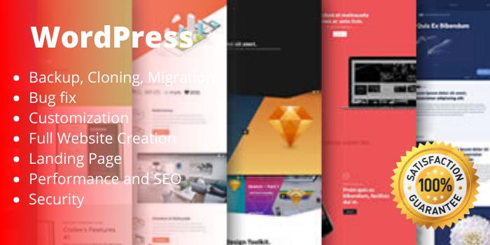 Design or Redesign your Wordpress Website To Look Attractive