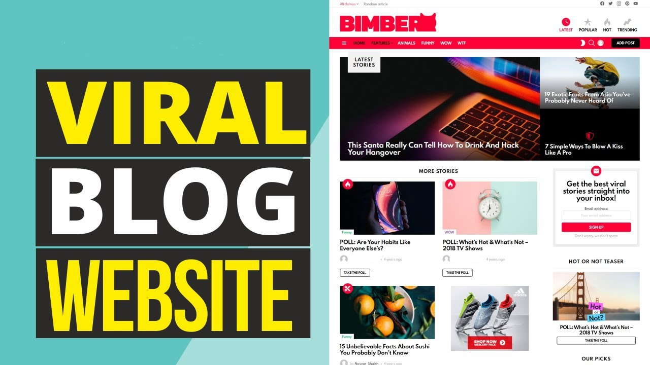 I will create a professional viral website blog