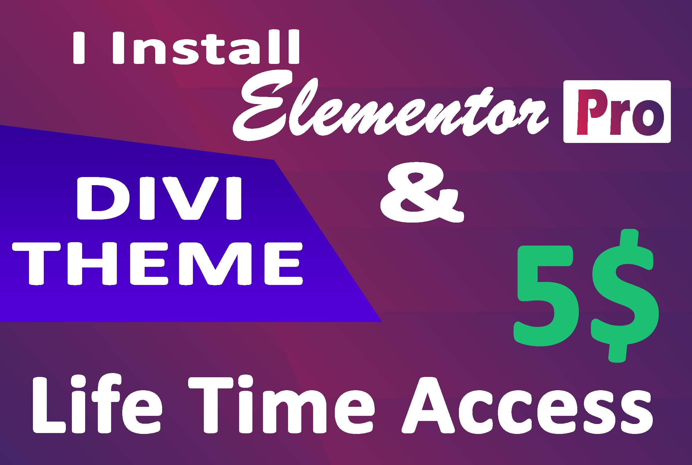 Install Elementor pro plugin on your website