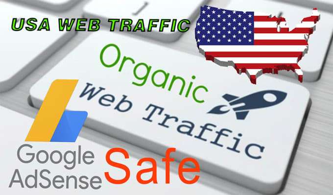i will provide 100,000 Real Web Traffic to your website