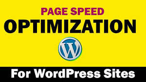 I will increase your website speed on Gtmetrix from 75to85+