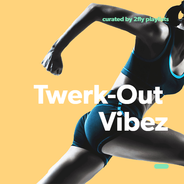 Add your song to 2Fly Twerk-Out Vibez 5,000+ Fans