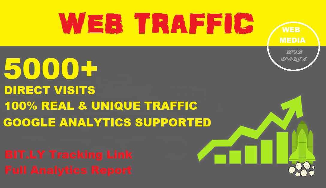 Provide 5000+ Website Traffic with Direct Visits