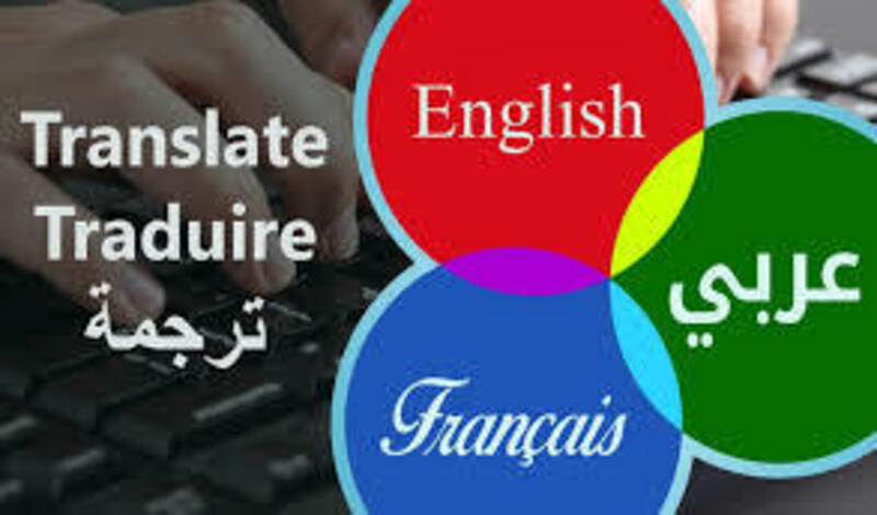 Professional translation of texts and articles Arabic - French - English