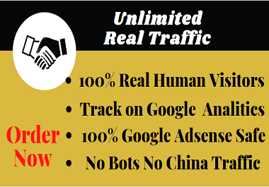 Worldwide Unlimited Real Traffic To Your website/blog for 1 month