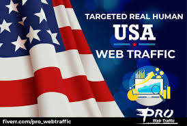 I will Generate 6,000 real organic traffic from USA to your website
