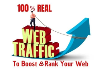 30,000 Adsense safe organic web traffic
