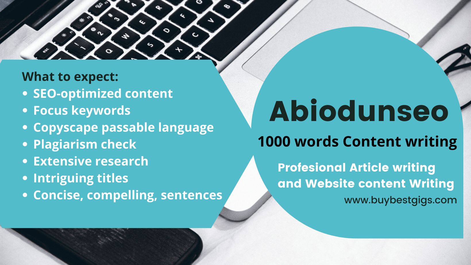 I will write 1000 words high quality SEO articles, blog posts and website content