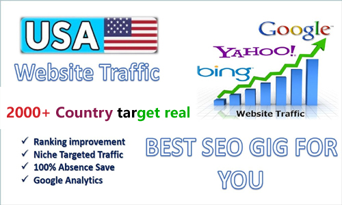 I will generate 2000+organic web Traffic to your website