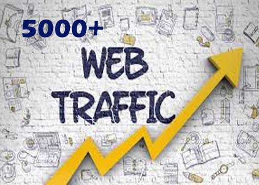 5000 Website Worldwide Traffic Visitors And Live Sport And Tracking Link Online