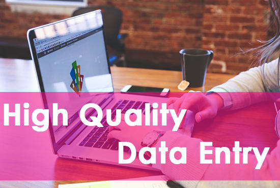 I will do data entry related work