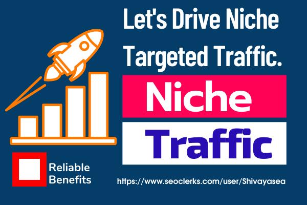 Next-Generation Advertising Niche targeted web traffic service