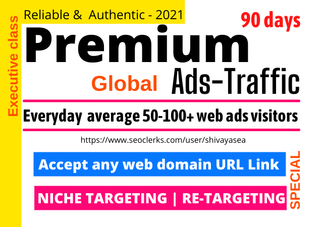 Premium niche targeted web traffic visitors to any website domain link